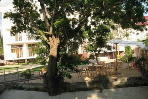 отдохнуть компанией отель Фандрин в Кабардинке отличный отдых в Геленджике