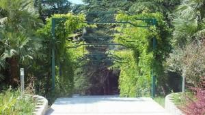 территория2 санаторий Зелена Роща элитный отдых Сочи Хоста